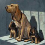 mrsbloodhound07